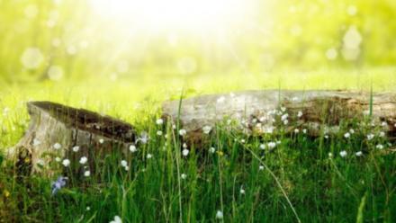 Hagioterapija – iscjeljenje duše